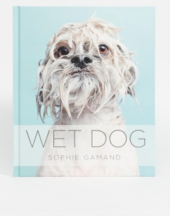 Livre Wet Dog, 17,99 euros