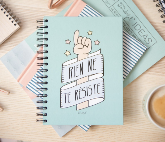 Cahier Rien ne te résiste, Mr Wonderful, 12 euros