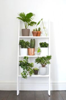 roselia-garden.com