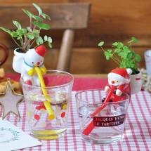 Chuppon de Noël : plante à faire pousser, SEISHIN, 14,90 euros