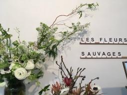 Les Fleurs Sauvages