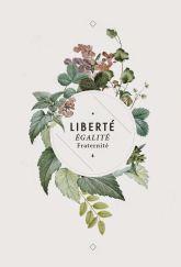 lapetitefabriquedereves.blogspot.com