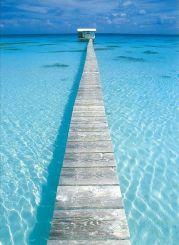paradiselifestyles.blogspot.com