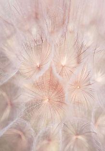 mininga-univers.tumblr.com